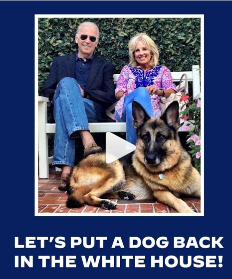 President-elect Joe Biden and his wife Dr. Jill Biden with one of their two German Shepherds.